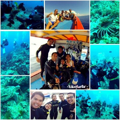 Diving di Bunaken dengan teman kuliah saya: Echa, Aji, Dita, dan Gita