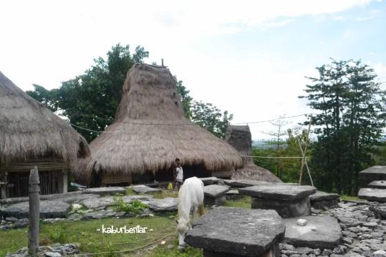 Kuburan batu di halaman tengah kampung