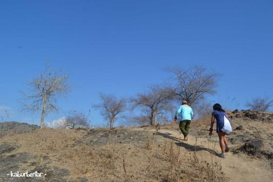 Trekking di Pulau Komodo