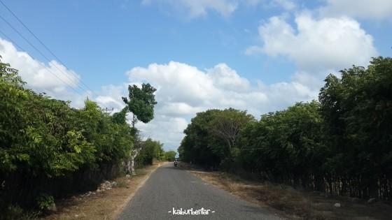 Jalan dari Waingapu menuju Walakiri