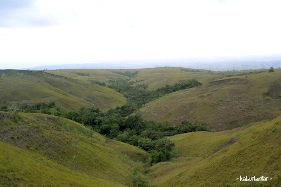 savanna east sumba